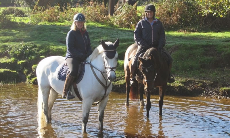 Hern Gate Farm - Riding and Facilities