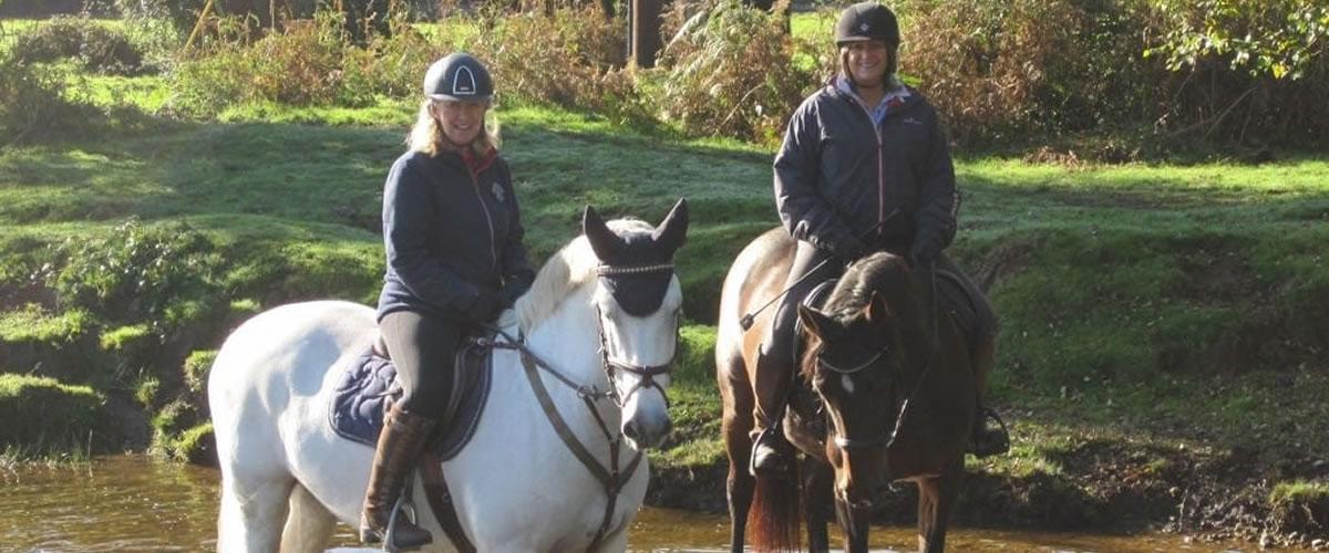 Hern Gate Farm - Riding Facilities